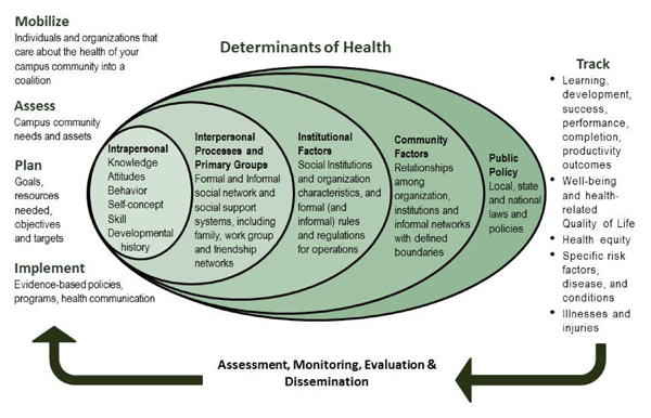 'map it' framework in addressing social determinats Social determinants of v6-third element of the framework: intermediary determinants reasserted the need to strengthen health equity by addressing social.